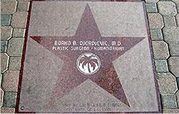 prof. dr Borko Đorđević humanitarna zvezda